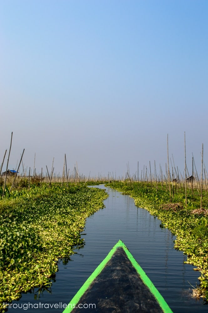At the floating gardens of Inle