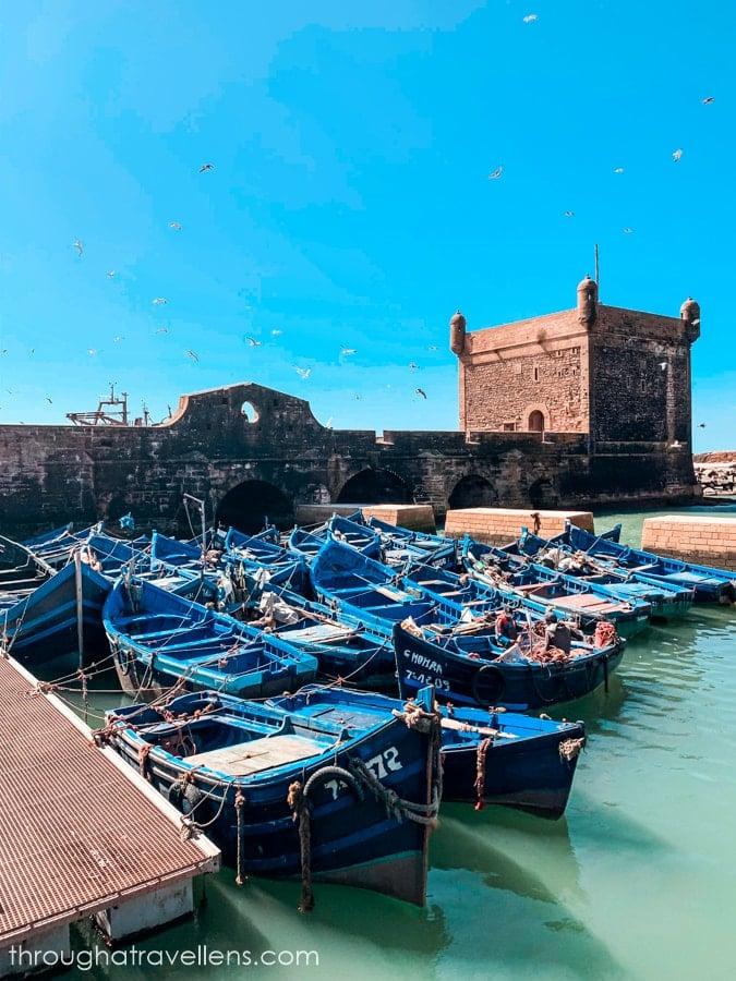 Blue boats of Essaouira