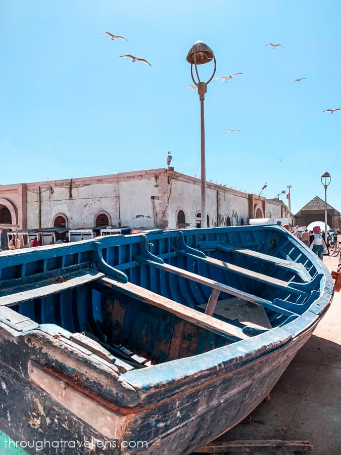 Essaouira 3-day trip: by the end of the journey, you'll have your memory card packed with pictures of the blue boats.