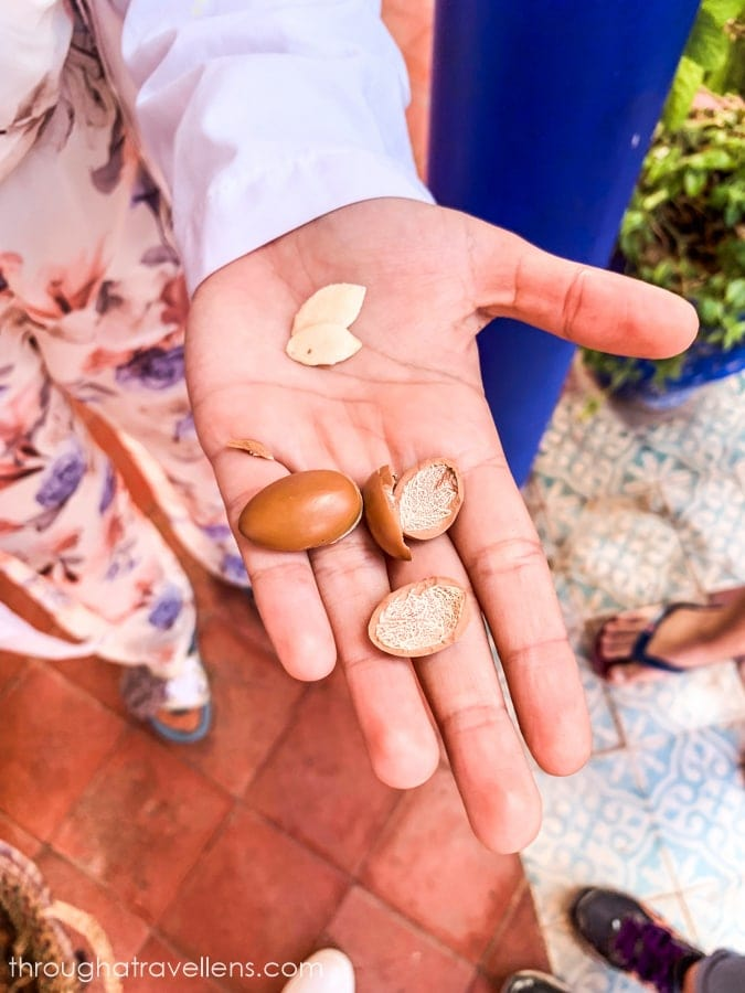 On your Essaouira 3-day trip, don't forget to get some Argan Oil souvenirs and products