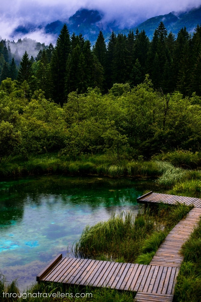 Day trips from Ljubljana: head to the source of river Sava in Zelenci