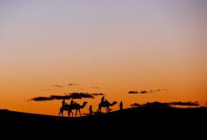 Glamping in Sahara 1.jpg