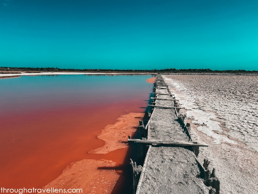 The pink lakes of the Kinburn Spit, Heroyske